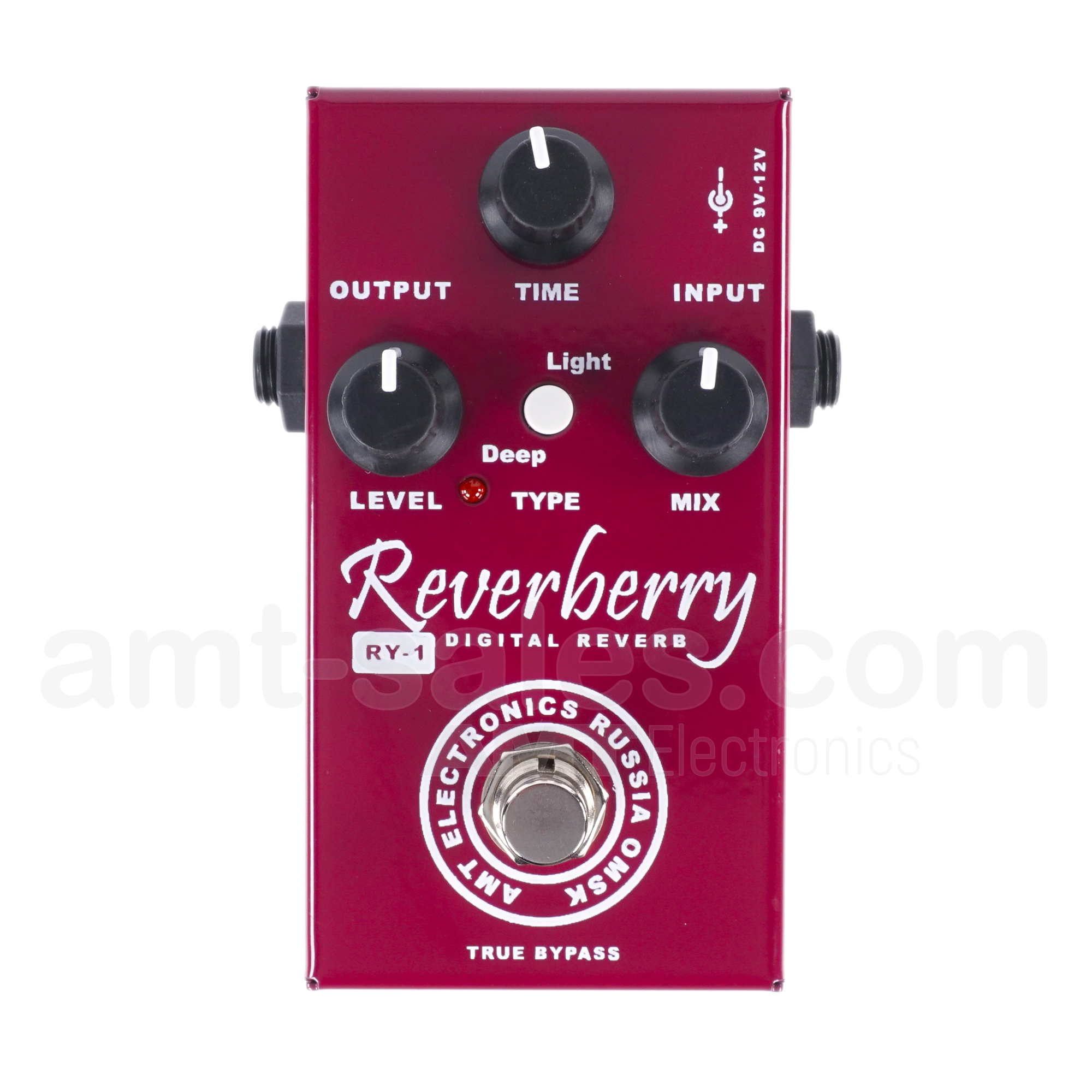 AMT RY-1 Reverberry - HQ Digital Reverb